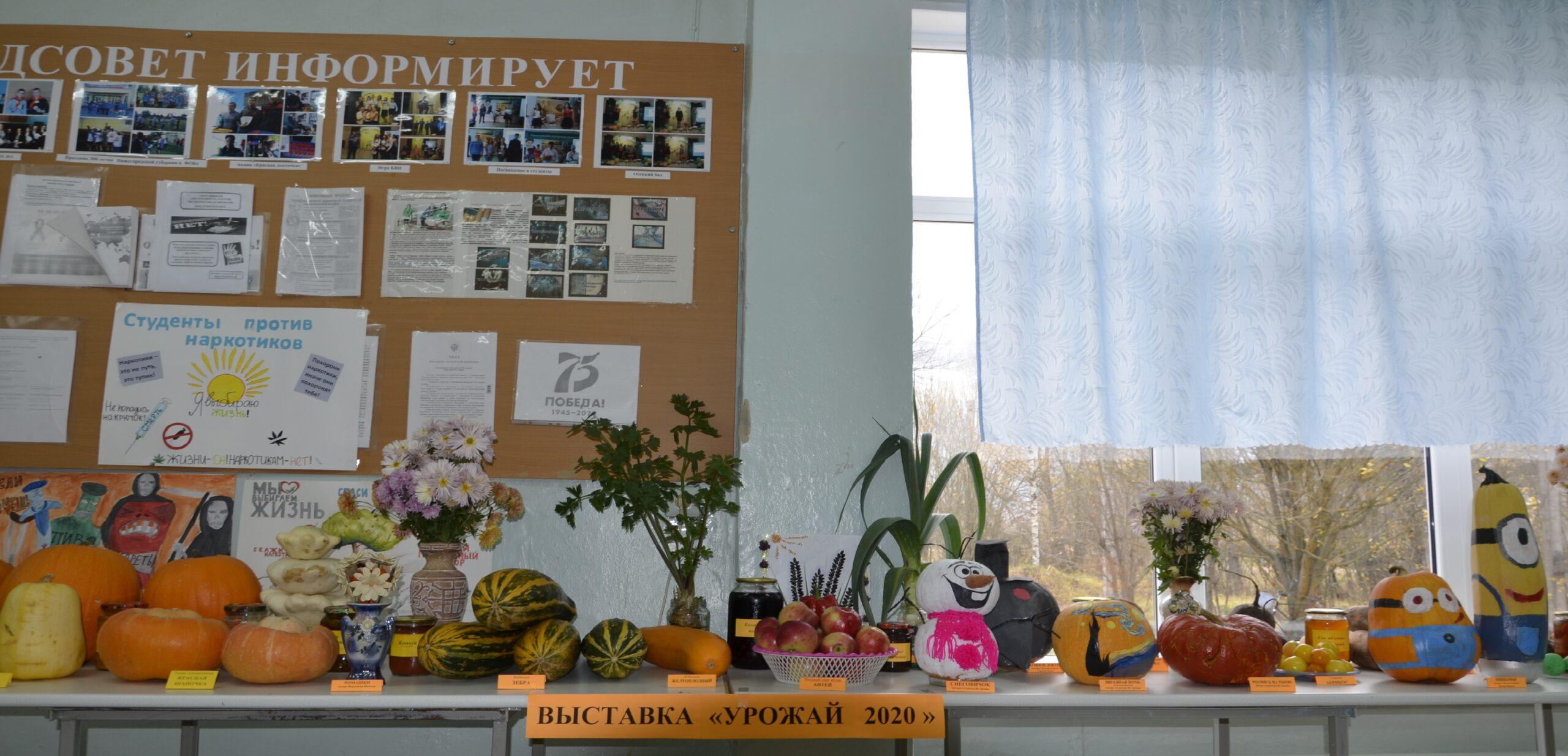 Выставка сельскохозяйственной продукции «Урожай 2020»